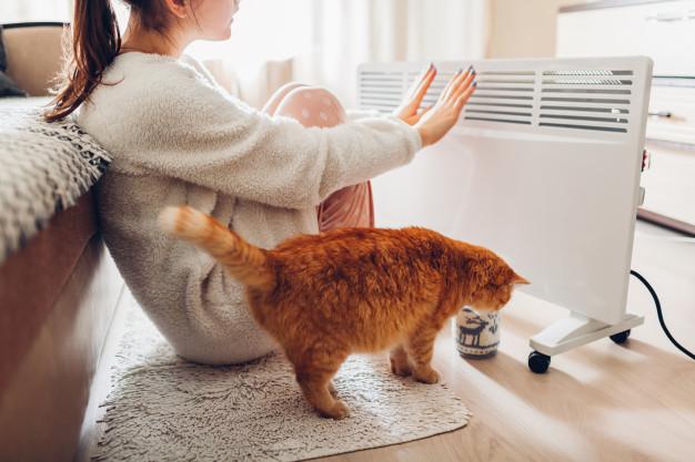 چه بخاری های خانگیبرای سلامتی و کیف پول شما خطرناک هستند