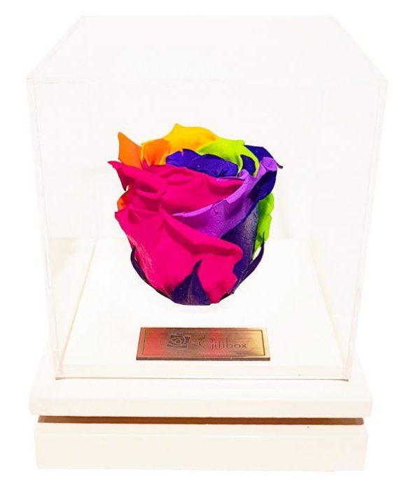 کادوی ولنتاین برای دختران جعبه گل ماندگار گیتی باکس مدل رز جاودان 7 رنگ بالسا