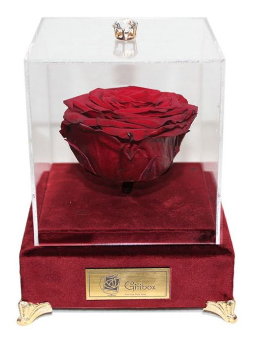 کادوی ولنتاین برای دختران جعبه گل ماندگار گیتی باکس مدل رز جاودان قرمز لاکچری آکاژو - سایز گل معمولی