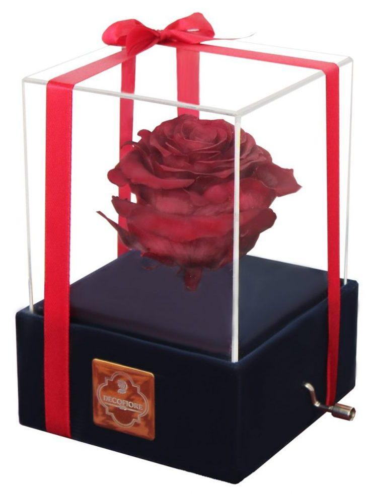 کادوی ولنتاین برای دختران جعبه موزیکال گل ماندگار دکوفیوره مدل رز جاودان ملودی های عاشقانه