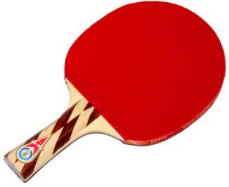 تنیس روی میز-راکت پینگ پونگ مدل گلد کاپ